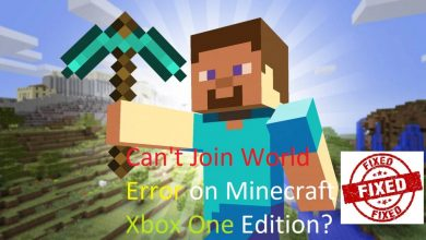 Can't Join World Minecraft